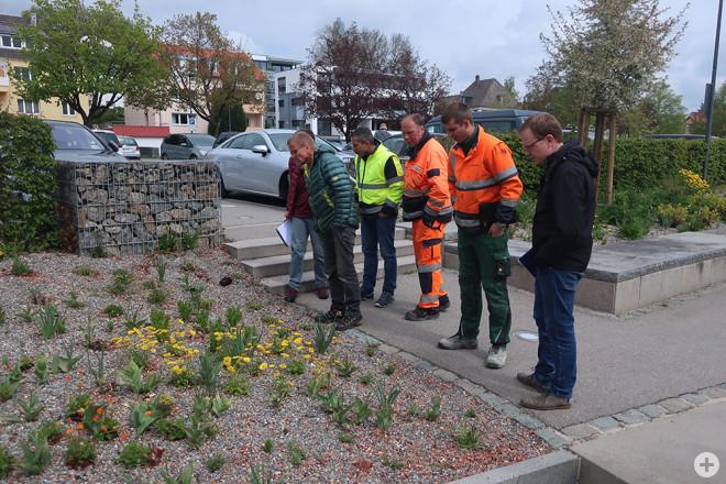 """Die Vertreterinnen und Vertreter der """"Natur nah dran""""-Kommunen in Ehningen auf einer Projektfläche, die 2018 angelegt worden war (Foto: NABU/Anette Marquardt)"""