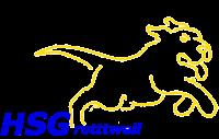Logo HSG Rottweil