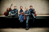 Ein Ensemble, das begeistert: das Signum Quartett (Foto: Zandel)