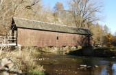 Die Brücke unterhalb der Neckarburg ist massiv durch Pilzbefall beschädigt und muss gesperrt werden. Die Bilder 2-4 zeigen die Schäden im Detail.