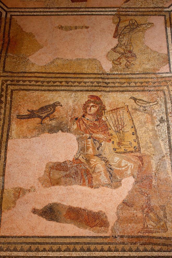 """Römische Pracht am Oberen Neckar: Das Orpheusmosaik zierte den Boden einer antiken Villa in """"Arae Flaviae"""" (Foto: Dominikanermuseum)."""