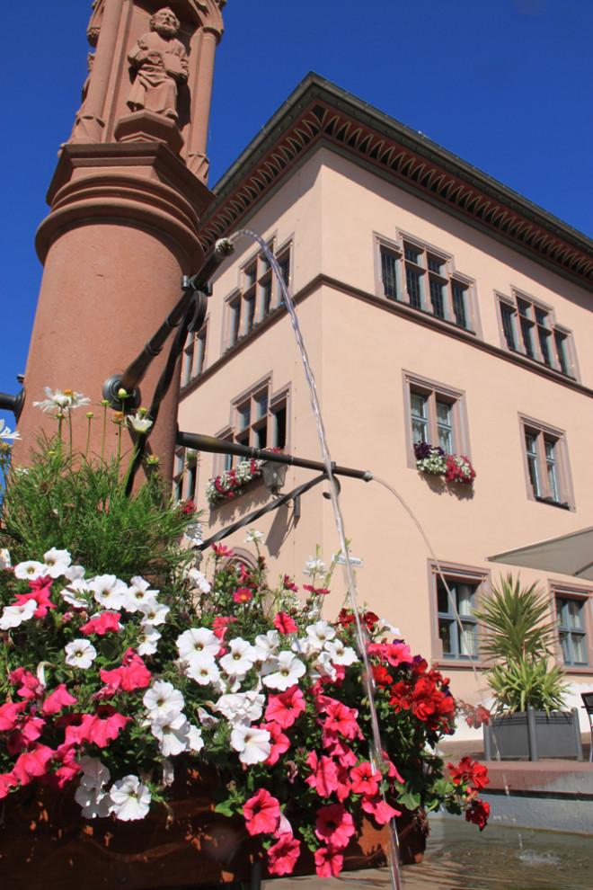 Beim Blumenschmuck-Wettbewerb wollen Stadt und GHV das Engagement der Bürger für das Stadtbild belohnen. Die Blumen des städtischen Betriebshofs am Apostelbrunnen vor dem Alten Rathaus laufen natürlich außer Konkurrenz (Foto: Stadt Rottweil).