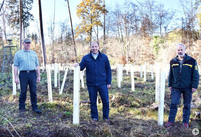 """Haumeister Martin Schlecht, Bürgermeister Dr. Christian Ruf und Forstrevierleiter Martin Straatmann (von links) begutachten die Aufforstungsfläche auf dem Altenberg bei Neufra. 1000 neue Bäume werden hier dieser Tage im Rahmen der Klimaschutzaktion """"1000"""