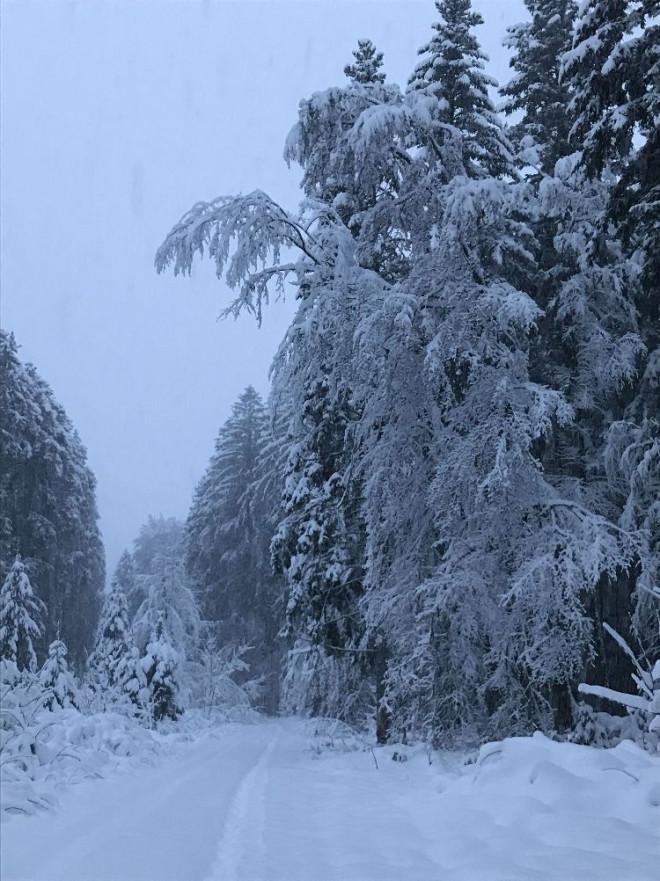 Heftiger Wintereinbruch im Januar 2021