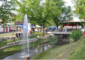 Dorffest Neufra 2010